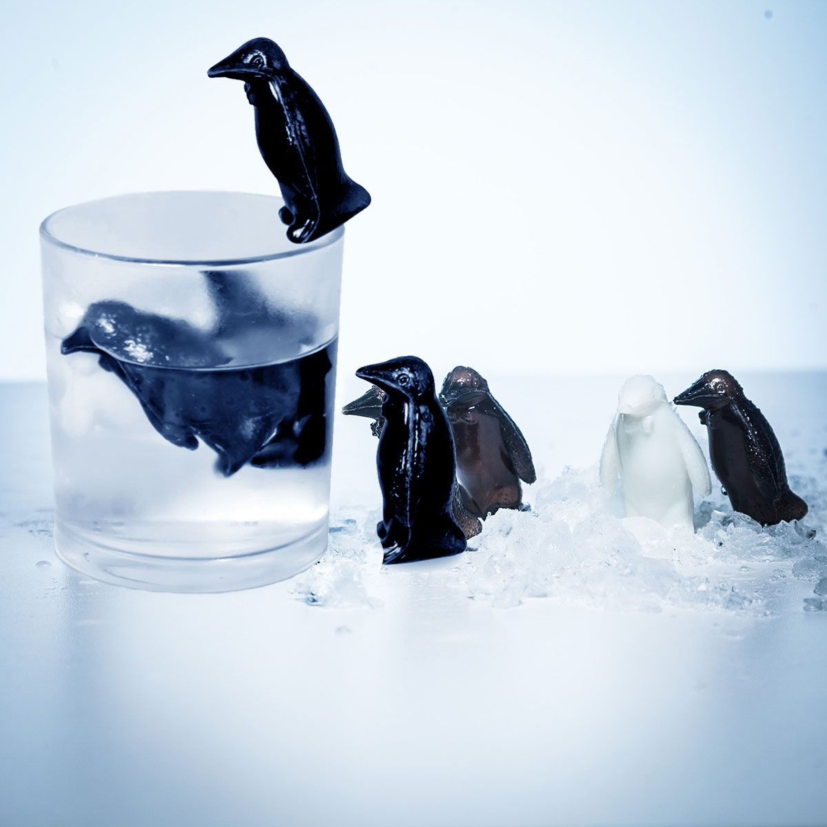 chilly_feet_drink_coolers_1