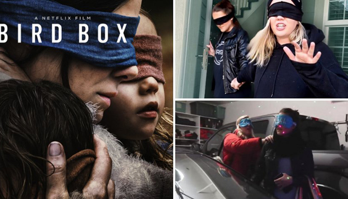 La locura del Bird Box Challenge se os ha ido de las manos